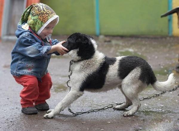 Köpekler ile Oynayan 25 Sevimli Çocuğun Komik Hali